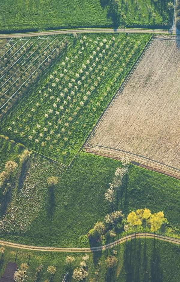 aumento bio italia
